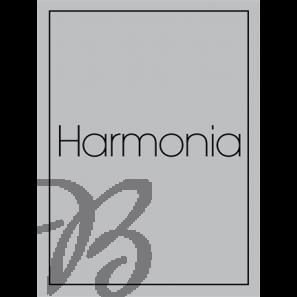 Voorspelen & Koraalharmonisaties 2