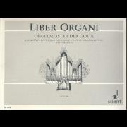 Orgelmeister der Gotik (Liber Organi 8)